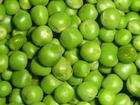 Hrách zelený  500 g