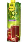Happy Day jahoda 1 l