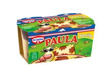 Mléčný dezert s vanilkovo-čokoládovou příchutí 200 g