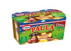 Mléčný dezert s čokoládovo–vanilkovou příchutí 200 g